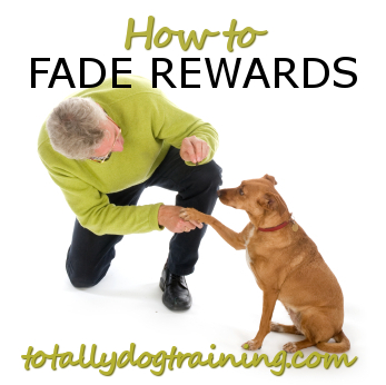 fade-rewardsFB.jpg