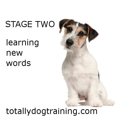 stage-twoFB.jpg