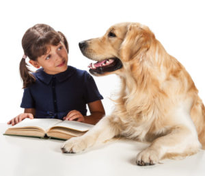 The language of dog training