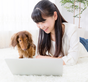 Dog Training Articles Online