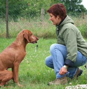 the secret to successful dog training