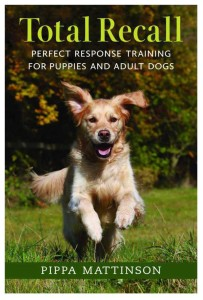15 Top Dog Training Videos