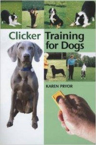 clicker-training-for-dogs-198x300
