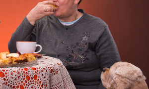How to stop your dog begging at the table