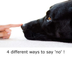 saying-no-to-your-dog