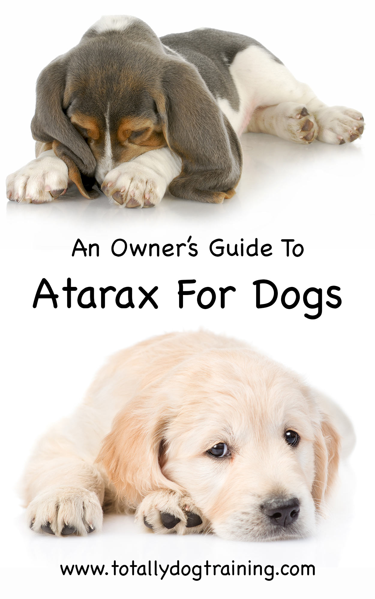 atarax for dogs