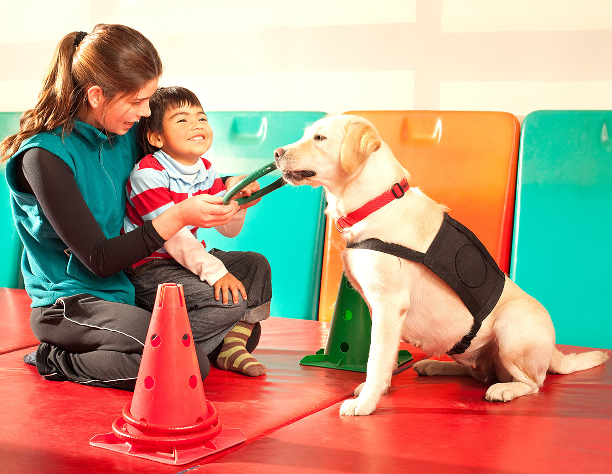 therapy dogs helping children