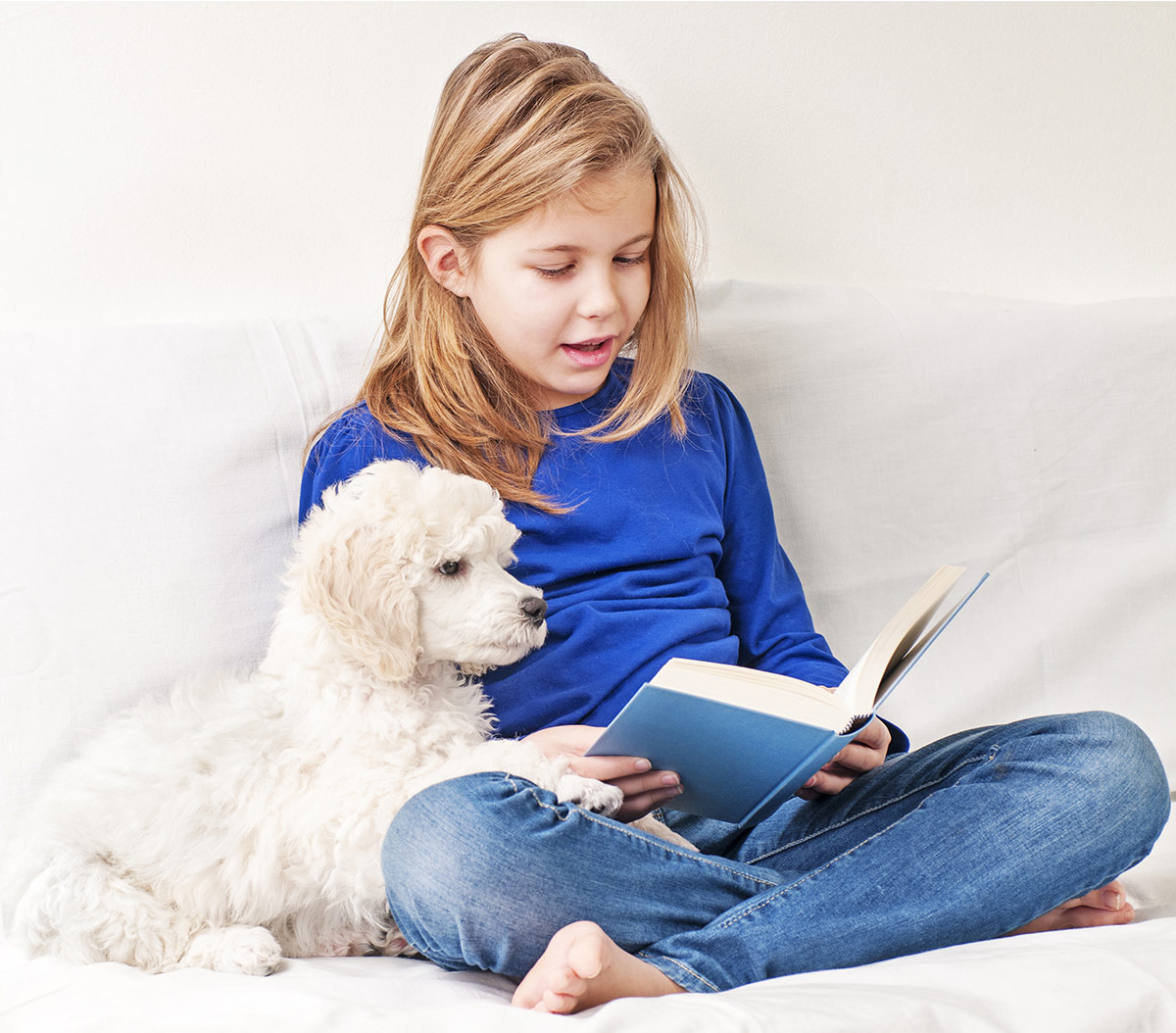 therapy dogs literacy